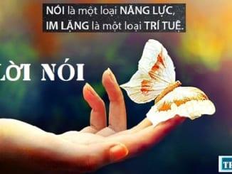 nghi-luan-loi-noi-chang-mat-tien-mua-lua-loi-ma-noi-cho-vua-long-nhau-12370-2