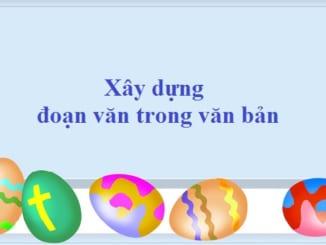 xay-dung-doan-van-trong-van-ban