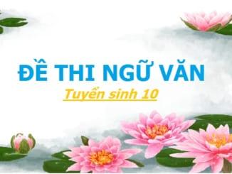 dap-an-de-thi-ngu-van-tuyen-sinh-10-nam-2009-2010-tp-hcm