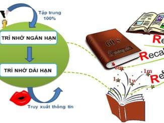 suy-nghi-cua-em-ve-phuong-cham-hoc-di-doi-voi-hanh