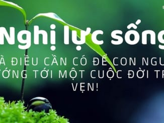10-suy-nghi-tich-cuc-ve-thai-do-song