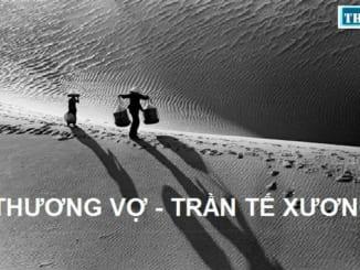 chat-an-tinh-va-hom-hinh-cua-ngoi-but-tu-xuong-qua-bai-tho-thuong-vo