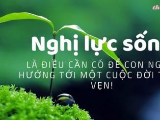 suy-nghi-ve-nghi-luc-vuon-len-cuanhung-nguoi-khong-chiu-thua-so-phan