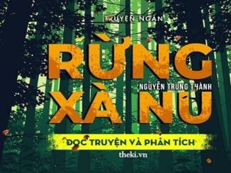 ve-dep-cua-con-nguoi-viet-nam-trong-cuoc-khang-chien-chong-mi-cuu-nuoc-qua-rung-xa-nu-va-nhung-dua-con-trong-gia-dinh