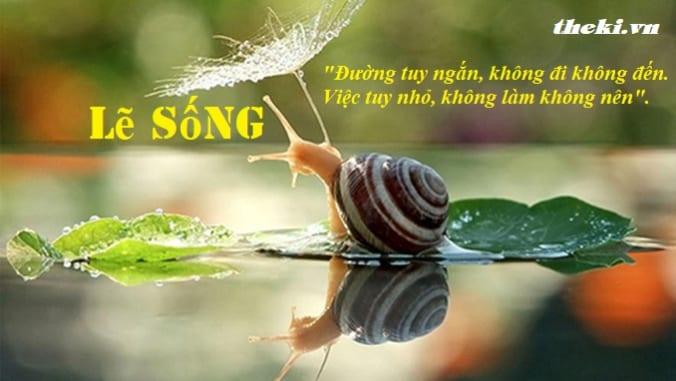 nghi-luan-tai-sao-tuoi-tre-phai-lua-cho-minh-le-song-phu-hop