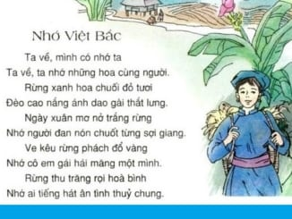 cam-nhan-doan-tho-nhung-duong-viet-bac-cua-ta-tu-do-nhan-xet-ve-dac-diem-tinh-tru-tinh-chinh-tri-trong-tho-to-huu