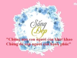 dan-y-nghi-luan-song-dep