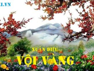 dan-y-cam-nhan-bai-tho-voi-vang-cua-xuan-dieu-678