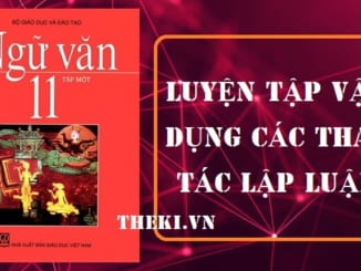 luyen-tap-van-dung-cac-thao-tac-lap-luan-2