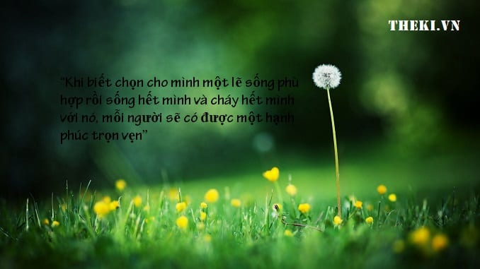 nghi-luan-khi-biet-chon-cho-minh-mot-le-song-phu-hop-roi-song-het-minh-va-chay-het-minh-voi-no-moi-nguoi-se-co-duoc-mot-hanh-phuc-tron-ven