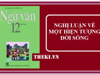 nghi-luan-ve-mot-hien-tuong-doi-song
