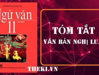 tom-tat-van-ban-nghi-luan