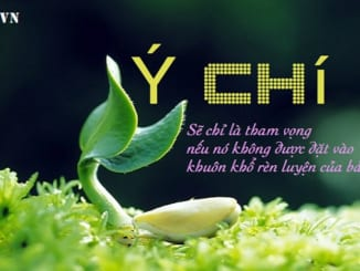 viet-bai-nghi-luan-400-chu-suy-nghi-ve-suc-manh-y-chi-cua-con-nguoi-trong-cuoc-song