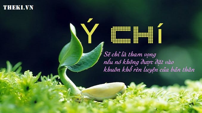 viet-bai-nghi-luan-400-chu-suy-nghi-ve-suc-manh-y-chi-cua-con-nguoi-trong-cuoc-song