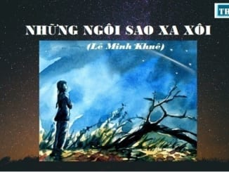 cam-nhan-long-dung-cam-va-tinh-than-trach-nhiem-trong-cong-viec-cua-nhan-vat-phuong-dinh