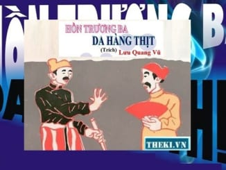 doc-hieu-van-ban-hon-truong-ba-da-hang-thit-cua-luu-quang-vu