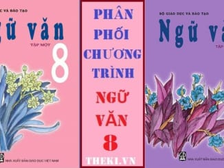 phan-phoi-chuong-trinh-ppct-ngu-van-8