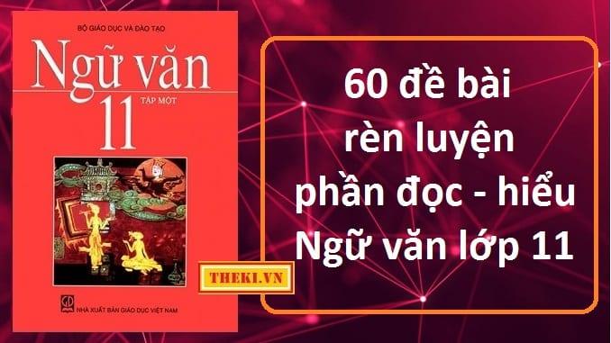 60-de-bai-ren-luyen-phan-doc-hieu-ngu-van-lop-11