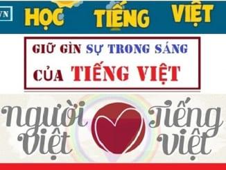 de-bai-doc-hieu-ve-chu-de-giu-gin-su-trong-sang-cua-tieng-viet