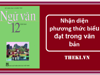 nhan-dien-phuong-thuc-bieu-dat-trong-van-ban