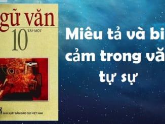soan-bai-mieu-ta-va-bieu-cam-trong-van-tu-su