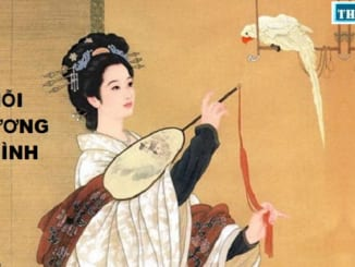 soan-bai-noi-thuong-minh-trich-truyen-kieu-nguyen-du