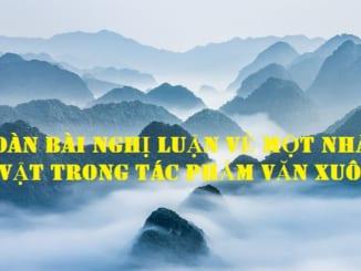 dan-bai-nghi-luan-ve-mot-nhan-vat-trong-tac-pham-van-xuoi