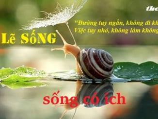 viet-bai-van-ngan-ban-ve-song-co-ich