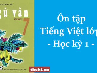 on-tap-tieng-viet-lop-7-hoc-ky-1