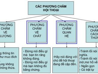 van-dung-cac-phuong-cham-hoi-thoai-pcht-da-hoc-de-giai-thich-vi-sao-nguoi-noi-doi-khi-phai-dung-nhung-cach-dien-dat-nhu-nhu-toi-duoc-biet-toi-tin-rang