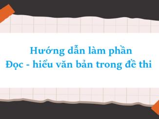huong-dan-lam-phan-doc-hieu-van-ban-trong-de-thi