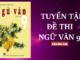 ngu-van-9-tong-hop-de-thi-hoc-ky-2