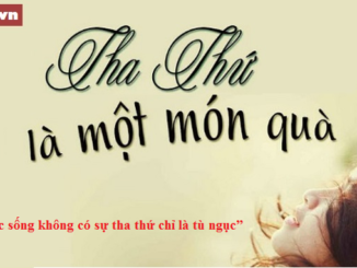 viet-mot-doan-van-nghi-luan-200-chu-ban-ve-viec-tha-thu-loi-lam-cua-nguoi-khac