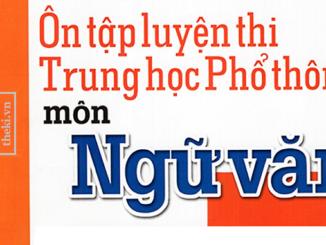 nhan-dinh-tinh-than-chung-cua-van-hoa-viet-nam-la-thiet-thuc-linh-hoat-dung-hoa-nham-neu-len-mat-tich-cuc-hay-han-che-cua-van-hoa-viet-nam-hay-giai-thich-ro-van-de-nay