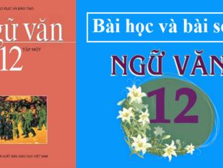 bai-hoc-nghi-luan-ve-mot-tu-tuong-dao-li-sgk-ngu-van-12-tap-1