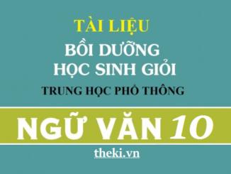 de-thi-hsg-ngu-van-10-chu-de-1-tha-lam-mot-bong-sen-no-khi-thay-mat-troi-roi-mat-het-tinh-nhuy-con-hon-giu-nguyen-hinh-nu-bup-trong-suong-lanh-vinh-cuu-cua-mua-dong