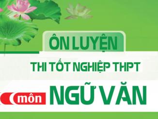 de-thi-tot-nghiep-thpt-mon-ngu-van-nlxh-le-phai-va-dieu-thien-nlvh-nhan-vat-nguoi-vo-nhat-trong-truyen-ngan-vo-nhat-cua-kim-lan