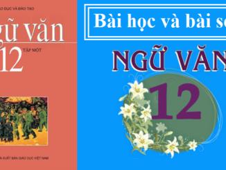 khai-quat-van-hoc-viet-nam-tu-cach-mang-thang-tam-1945-den-het-the-ki-xx-sgk-ngu-van-12-tap-1