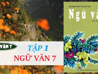 van-ban-nhung-cau-hat-ve-tinh-yeu-que-huong-dat-nuoc-con-nguoi-day-du-ngu-van-7
